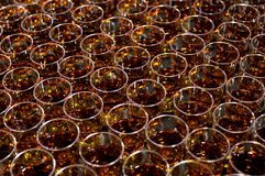 Cognac in glasses. A large number of glasses. royalty free stock photos