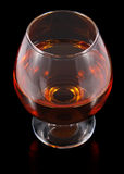 Cognac in goblet Stock Photography