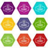 Cognac icons set 9 vector. Cognac icons 9 set coloful isolated on white for web royalty free illustration