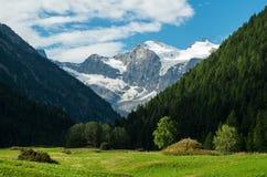 Cogne e o parque nacional de Gran Paradiso Imagens de Stock