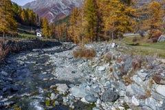 COGNE VALLE D'AOSTA/ITALY - OKTOBER 26: Nunnaläsning vid flod I arkivfoto