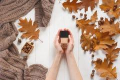 Cognez avec du cosmétique dans les mains du ` s de femme Vue supérieure Concept naturel de cosmétiques de beauté Beauté d'automne Photos libres de droits