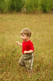 Cognition of world. A little boy runs on a meadow stock images