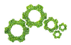 Cogs or gears from green grass Stock Photography