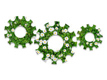 Cogs or gears from the green grass with white flowers Royalty Free Stock Photography