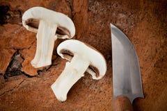 Cogumelo cortado Imagem de Stock