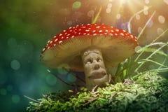 Cogumelo da fantasia Imagens de Stock