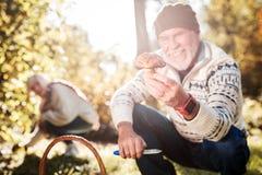 Cogumelo da floresta que está sendo guardado por um homem alegre positivo foto de stock