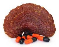 Cogumelo de Ganoderma com cápsula foto de stock