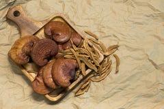 Cogumelo de Lingzhi Imagem de Stock Royalty Free