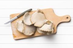 Cogumelo de ostra Fotografia de Stock Royalty Free