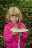 Cogumelo de parasol Fotos de Stock