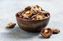Cogumelo de shiitake secado imagem de stock royalty free