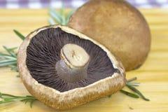 Cogumelo do BBQ de Portabello Fotos de Stock