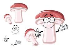 Cogumelo do bolete do marrom do rei dos desenhos animados Foto de Stock Royalty Free