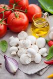 Cogumelo do cogumelo com ingredientes italianos Fotografia de Stock Royalty Free