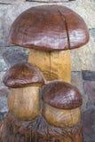 Cogumelo embutido no tronco da árvore imagens de stock royalty free