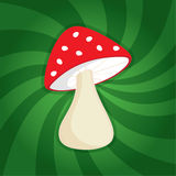 Cogumelo engraçado do vermelho dos desenhos animados Fotos de Stock
