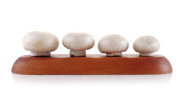 Cogumelo isolado no fundo branco Foto de Stock Royalty Free