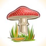 Cogumelo vermelho do cogumelo venenoso do logotipo do vetor ilustração royalty free