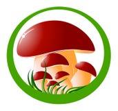 Cogumelos Ilustração Royalty Free