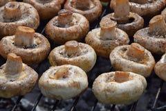 Cogumelos brancos dos cogumelos na grade Imagens de Stock Royalty Free