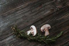 Cogumelos brancos em placas pretas Imagens de Stock