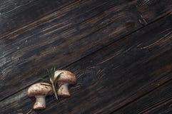 Cogumelos brancos em placas pretas Fotografia de Stock Royalty Free