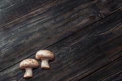 Cogumelos brancos em placas pretas Fotos de Stock