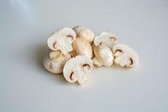 Cogumelos brancos em uma pilha Fotografia de Stock