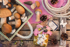 Cogumelos brancos enlatados, cogumelos brancos crus e cones do pinho Foto de Stock Royalty Free