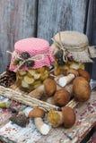 Cogumelos brancos enlatados e cogumelos brancos crus Imagem de Stock Royalty Free