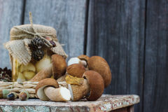 Cogumelos brancos enlatados e cogumelos brancos crus Imagem de Stock