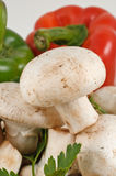 Cogumelos brancos frescos saborosos com pimentas Fotos de Stock Royalty Free