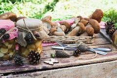 Cogumelos brancos na caixa com decorações secas Fotografia de Stock