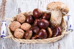 Cogumelos, castanhas, nozes imagem de stock royalty free