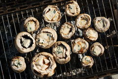 Cogumelos com queijo azul Fotografia de Stock Royalty Free