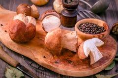 Cogumelos comestíveis selvagens dos cepa-de-bordéus na placa de corte Imagem de Stock Royalty Free