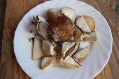 Cogumelos congelados desbastados do cepa-de-bordéus em uma placa branca imagem de stock