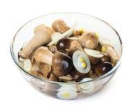 Cogumelos conservados em uma bacia de vidro Fotos de Stock