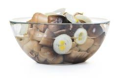 Cogumelos conservados em uma bacia de vidro Foto de Stock Royalty Free