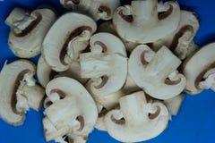 Cogumelos cortados em um fundo azul fotos de stock
