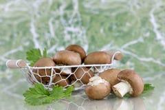 Cogumelos de botão de Brown Fotografia de Stock