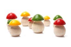 Cogumelos de madeira Foto de Stock Royalty Free