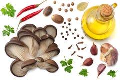 Cogumelos de ostra, salsa, alho, óleo e especiarias isolados no fundo branco Vista superior Imagem de Stock Royalty Free