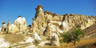Cogumelos de pedra Imagens de Stock Royalty Free