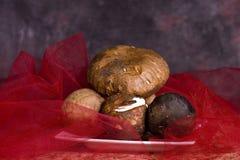 Cogumelos de Porcini Imagens de Stock Royalty Free