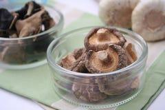 Cogumelos de Shiitake Imagem de Stock