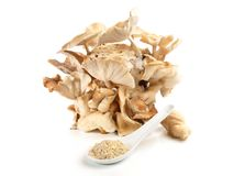 Cogumelos de Shiitake - nutrição saudável fotografia de stock