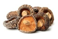 Cogumelos de shiitake secados Imagem de Stock Royalty Free